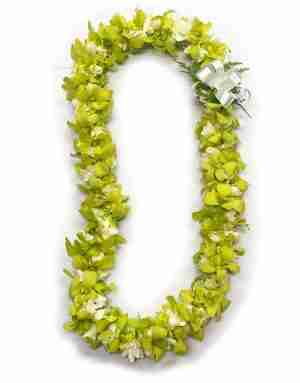 Double Tuberose and Green Orchid Lei