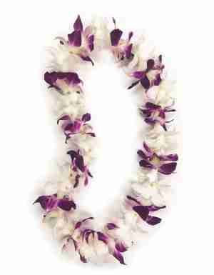 Purple and White Orchid Lei