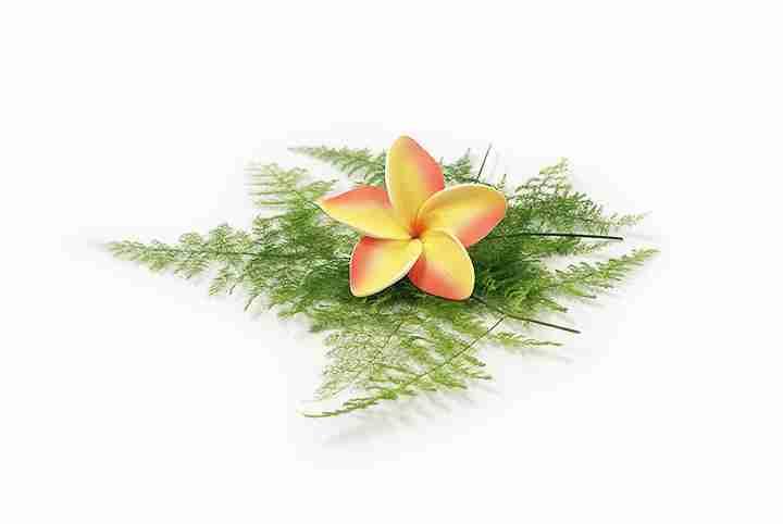 Artificial Flower Hair Clips & Haku